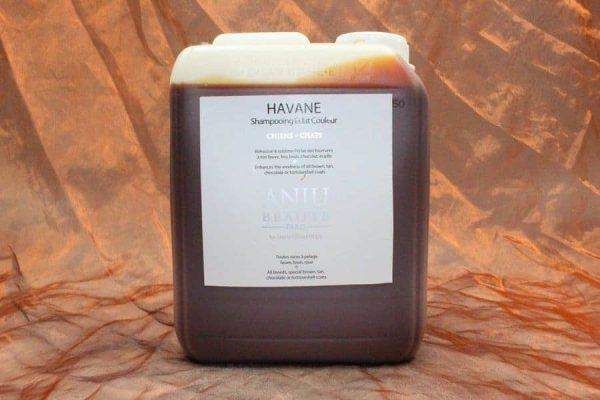 Anju Beauté Havane Shampoo 2500 ml 1 600x400 - Anju-Beauté, Havane Shampoo, 2500 ml