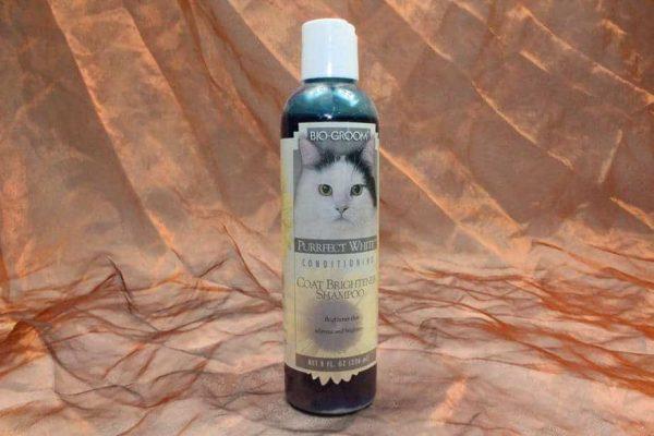 Bio Groom Purrfect White Shampoo 236 ml 2 600x400 - Bio-Groom, Purrfect White Shampoo, 236 ml