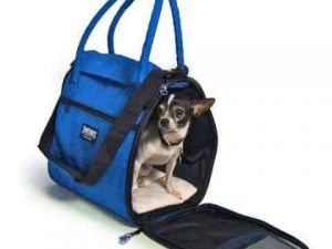 SturdiBag™ - Incognito Pet Carrier