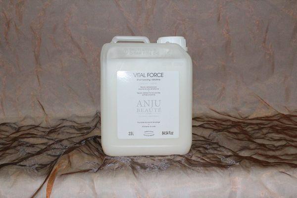 Anju-Beauté, Vital Force Shampoo, 2500 ml