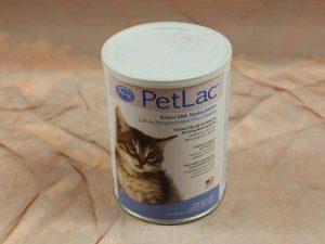 PetAg, Petlac Kitten