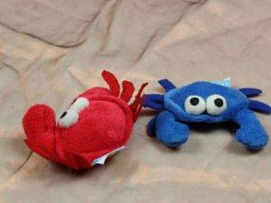 The Sea Creature