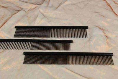 tn_Greyhound Black, 19 cm en 25 cm All Types